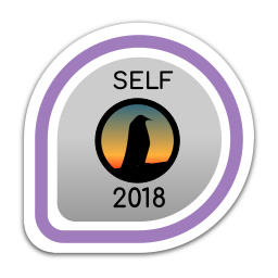 self-2018 icon